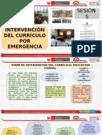 Intervencion Del Curriculo Por Emergencia - i.e. r.p- Canas..Pptx