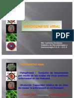 Clase 19 Patogénesis viral 2007. (2)