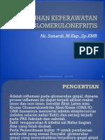 glomerulonefritis 1.pdf