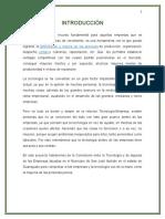 PROYECTO DE ESTADÍSTICA.docx