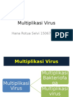 Multiplikasi Virus