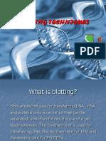 5.1 Blotting Techniques