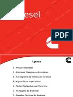 3 Biodiesel 2008