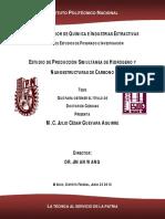 ESTUDIO DE PRODUCCION SIMULTANEA DE HIDROGENO Y NANOESTRUCTURAS DE CARBONO