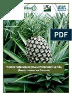 Paquete Tecnologico de Pina (2)
