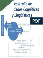 Desarrollo de Habilidades Cognitivas y Lingüísticas