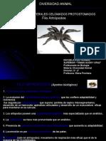 Artrópodos (Generalidades y Arácnidos)