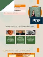 D UNMSM - Perspectivas Del Curriculum