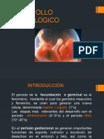 DESARROLLO-EMBRIOLOGICO.pptx