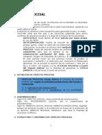 Apuntes de  derecho procesal organico