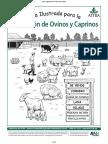 132-ovinos_ilustrada.pdf