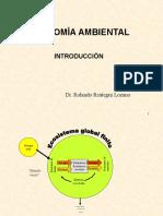 ECONOMÍA AMBIENTAL doctorado1