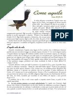 come_aquile.pdf