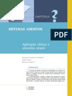 adesivos_ksh.pdf