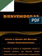 mcca-130506092922-phpapp01