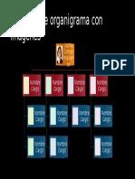 organigrama_tipo2