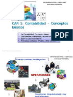 Cap 1 Contabilidad Conceptos Básicos