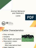 08 Animal Behavior Restraint Cattle JIT PPT FINAL