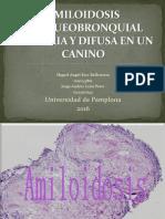 Amiloidosis Traqueobronquial Primaria y Difusa en Un Canino. Ppt