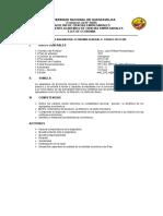 Silabo de Economia 2016 Competencias (2)