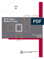 Burn Injury Model of Care.pdf
