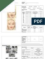 Examen Gato-foto-static Pg 1 Bis