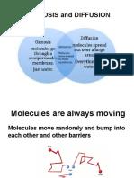 Osmosis, Diffusion Presentation.pptx