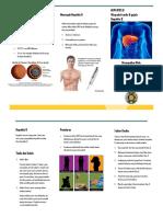 300379967-Leaflet-Hepatitis-B.pdf