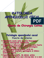 Curs 2 Patologia Apendicelui Cecal