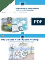 MSP by EU.pdf