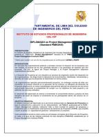 Programa PMI