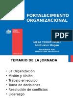 Fortalecimiento Organizacional Taller 2017