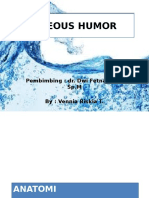 Aqueous Humor PPT
