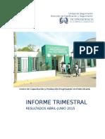 2prosoliInformedeSeguimiento2dotrimestre2015.docx