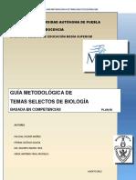 GUIA TEMA...pdf