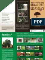Damas Tree