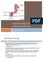 anatomi Fisiologi Faring, Laring, Esofagus