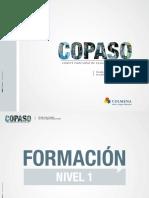 Cartilla Copaso.pdf