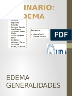 EDEMA Seminario