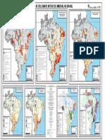 ARIM_Brasil-mapa.pdf