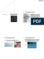 Fisiologia Sensorial.pdf