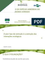 Aula 20_polinizacao Especies Arboreas Do Bioma Cerrado