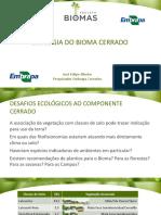 Aula 17_ecologia Do Bioma Cerrado