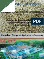 China Mega Pig Farm Manure Treatment With House Fly Larvae Pics and HDmovie