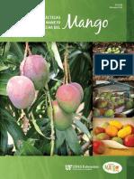 Mejora Cosecha de Mango