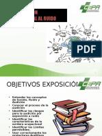 Proteccion Auditiva.ppt