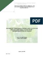"""Álvarez, Rios - 2007 - Estudio de Viabilidad Económica Del Cultivo de Plukenetia Volubilis Linneo """" Sacha Inchi """" – Departamento de San"""