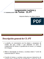 102171696-Pruebas-CL-PT DESCRIPCION GENERAL}.pdf