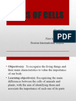 6th Science Types of Cells Ppt