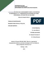 Tesis Macarena Guajardo FINAL.pdf